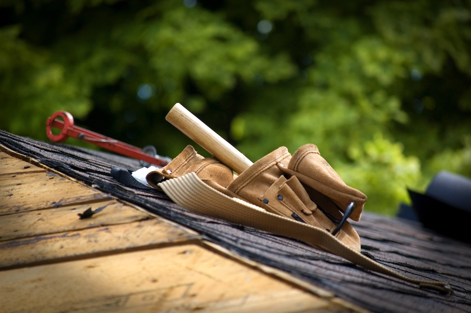 Harness the Safety of Fall Protection